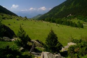 1 Vall de la Llosa Cerdanya 1 320x200