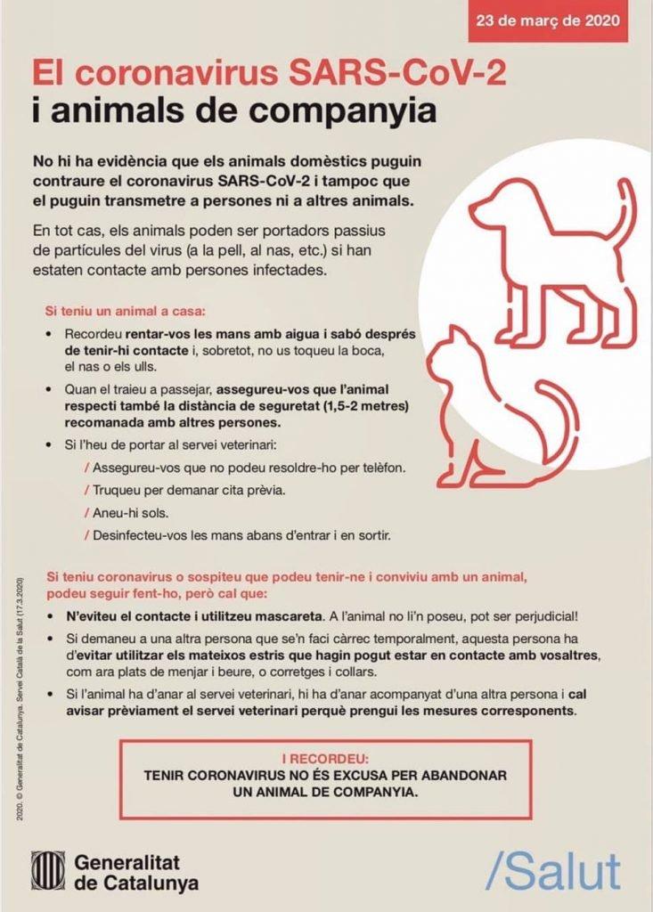 Gossos i gats animals|