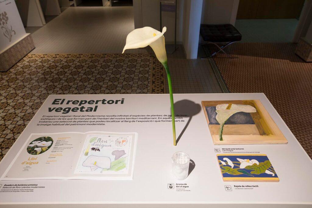 Exposició El Modernisme i les flors. Foto Eva Guillamet. Cultura DIBA.