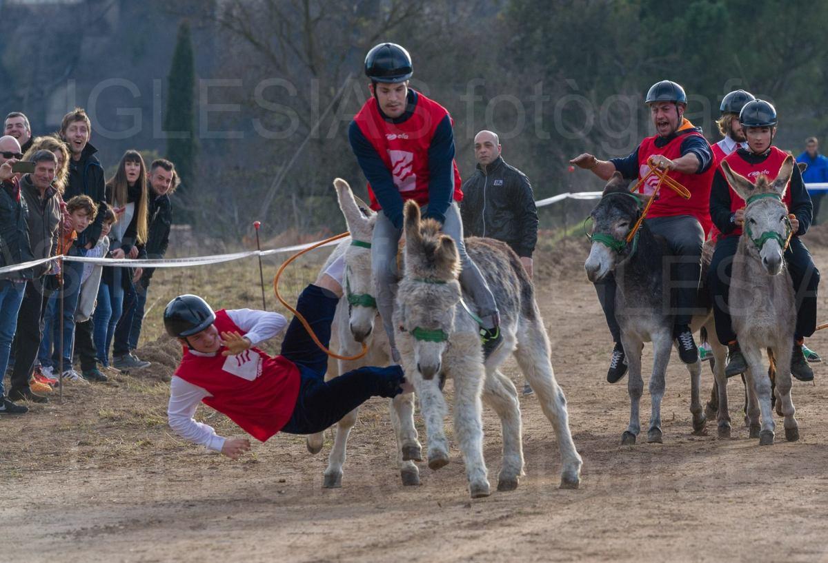Home caient del burro a mitja carrera