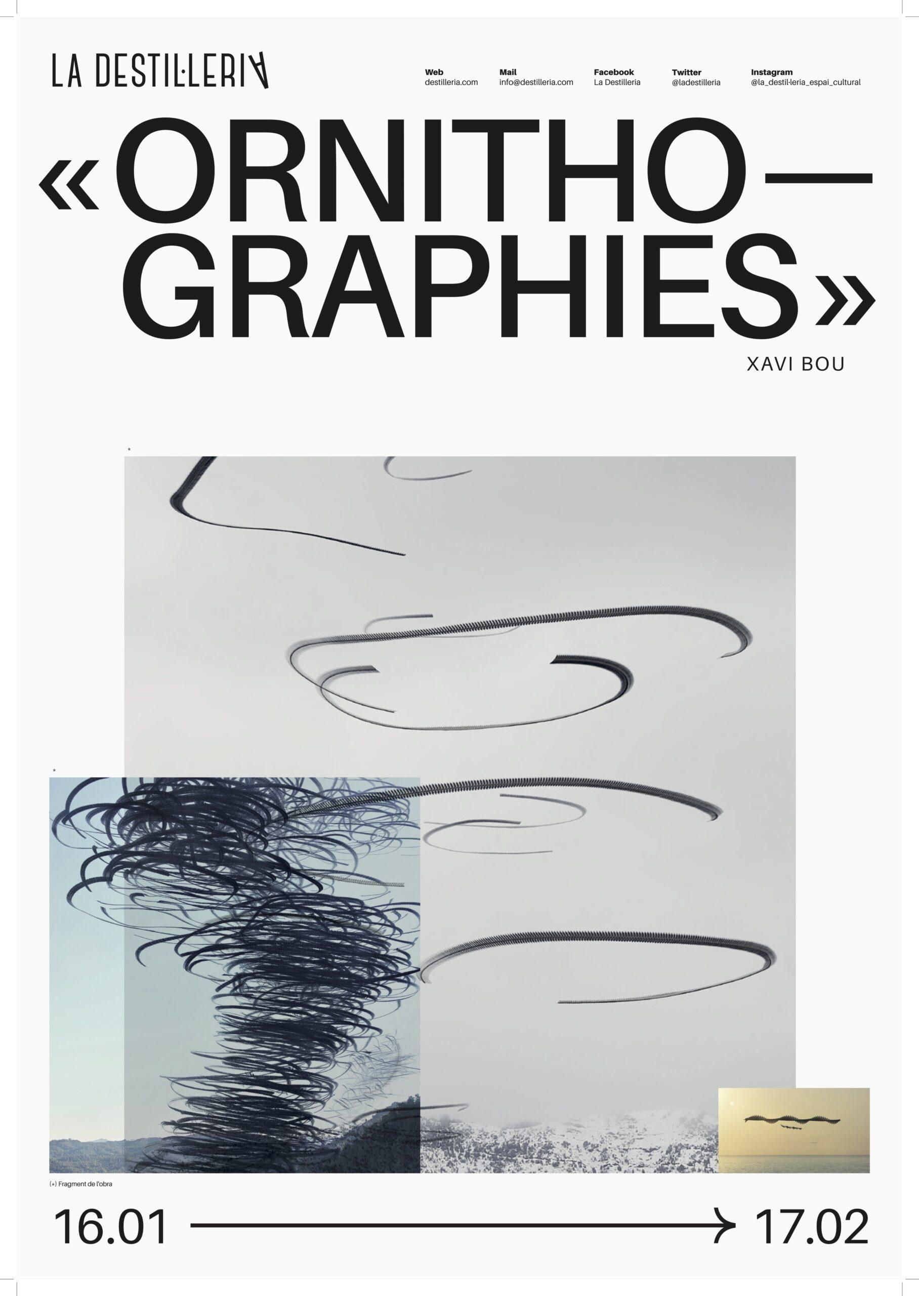 """""""Ornitografies"""" és el nom de l'exposició del fotògraf Xavi Bou"""