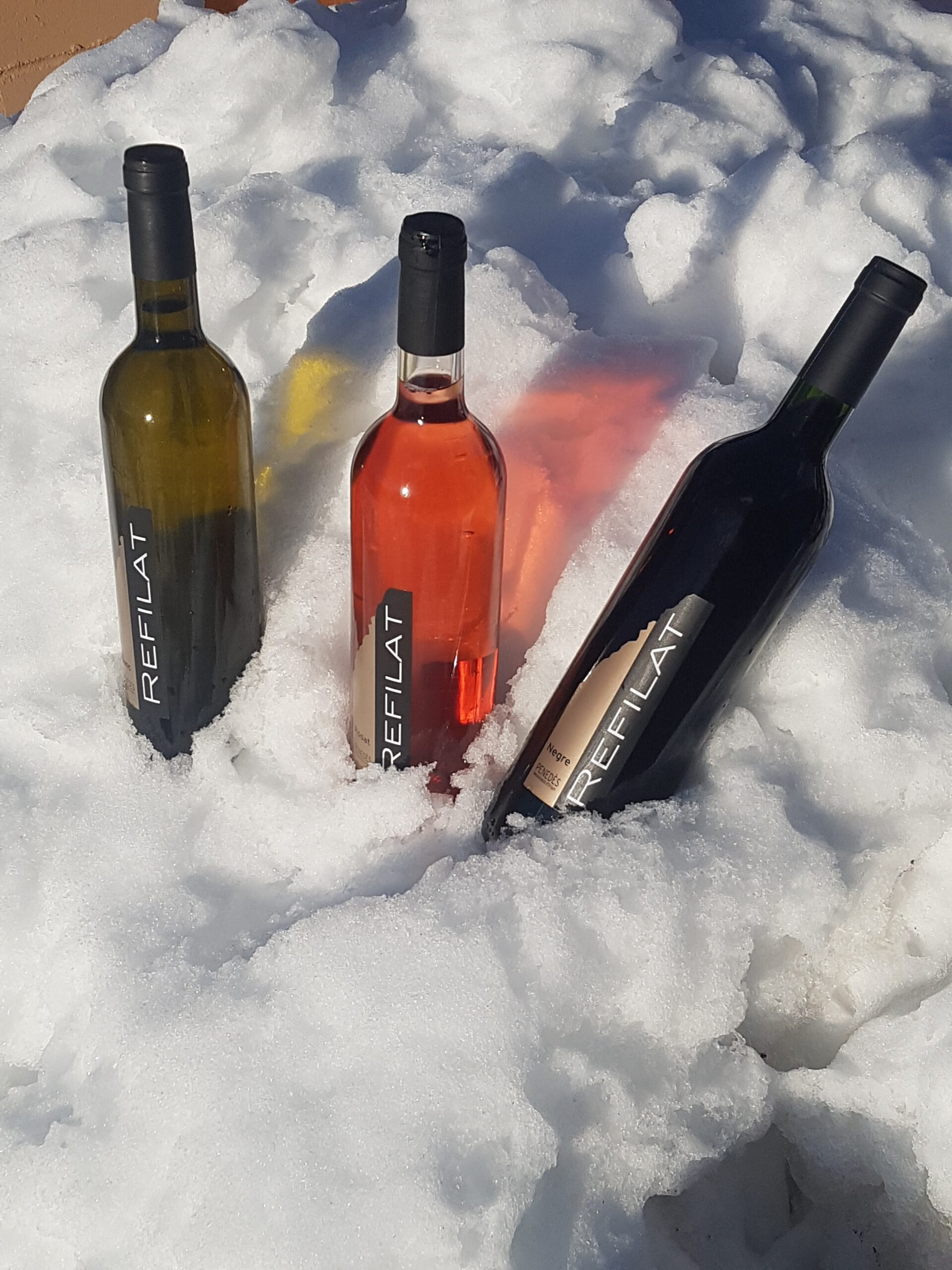 Cada moment i cada persona tenen el seu vi. Vi blanc, rosat i negre.