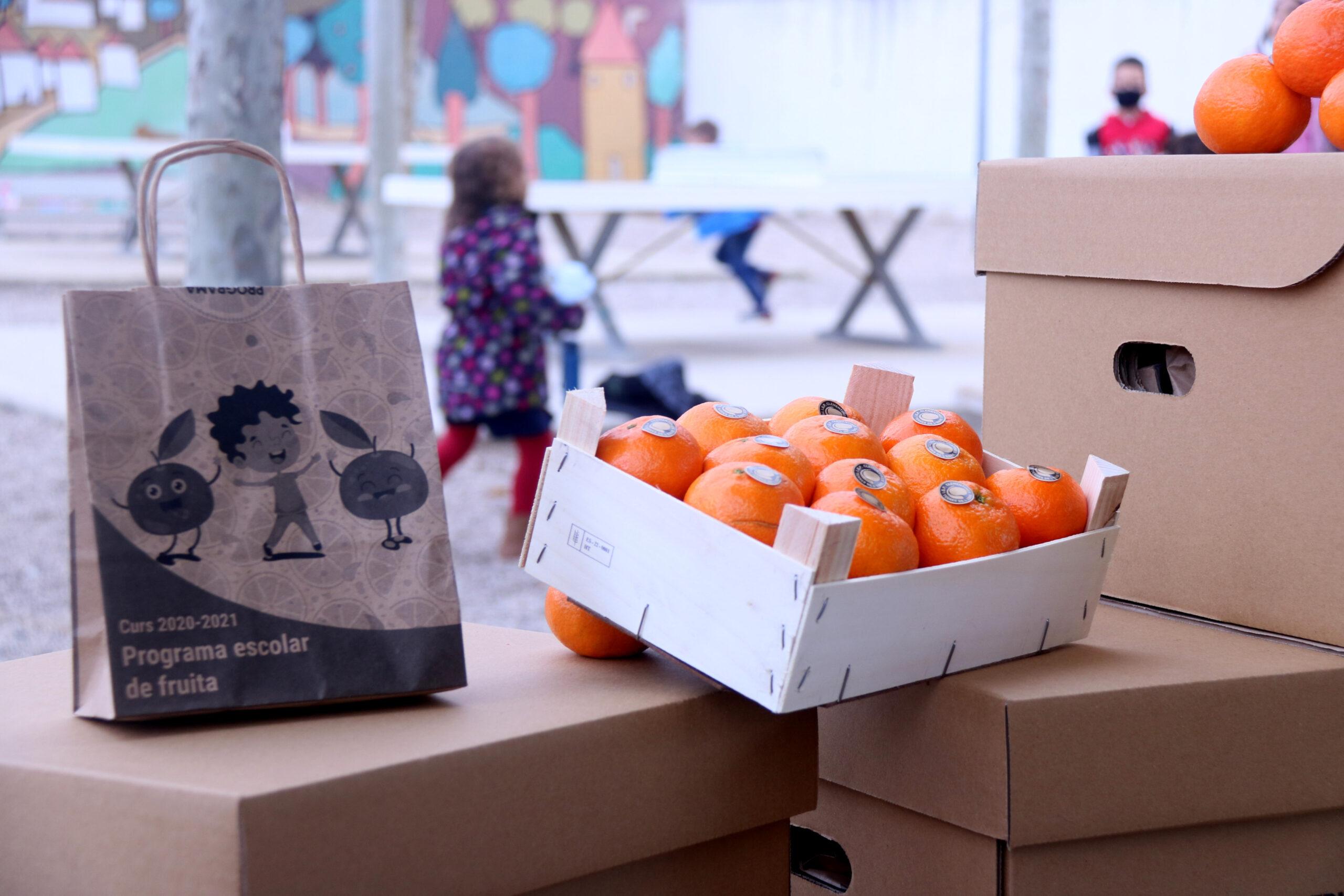 Pla detall d'una caixa i una bossa de clementines