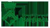 Logo Consell Comarcal Berguedà