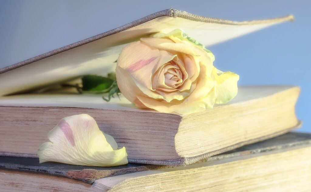 La casualitat va fer que llibres i roses coincidissin en aquesta festa grossa de l'amor i la cultura.