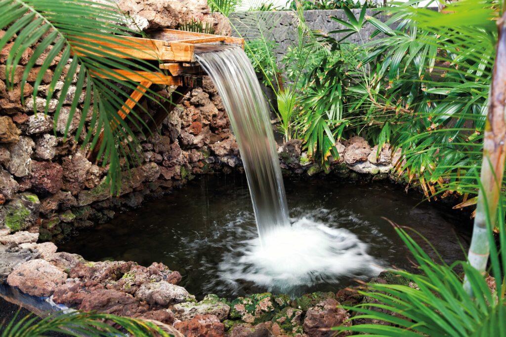 Un sortidor d'aigua és un lloc ideal perquè els animals com ocells i esquirols acudeixin al nostre jardí