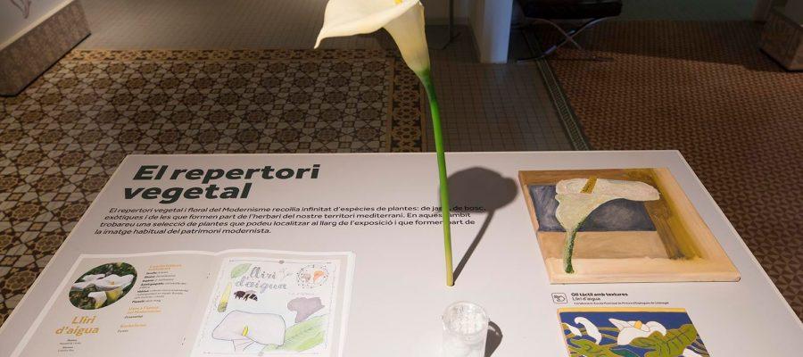 Expo-El-Modernisme-i-les-flors_-Foto-Eva-Guillamet-Cultura-DIBA-7