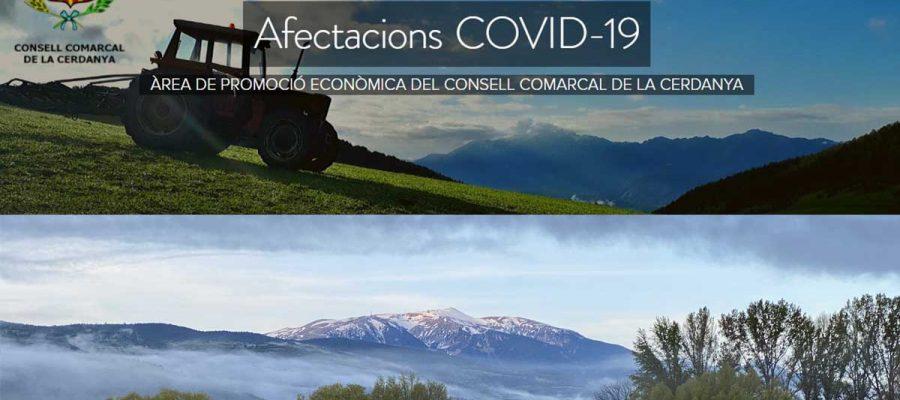 Informació útil per al teixit econòmic de la Cerdanya en el blog creat des del Consell Comarcal.