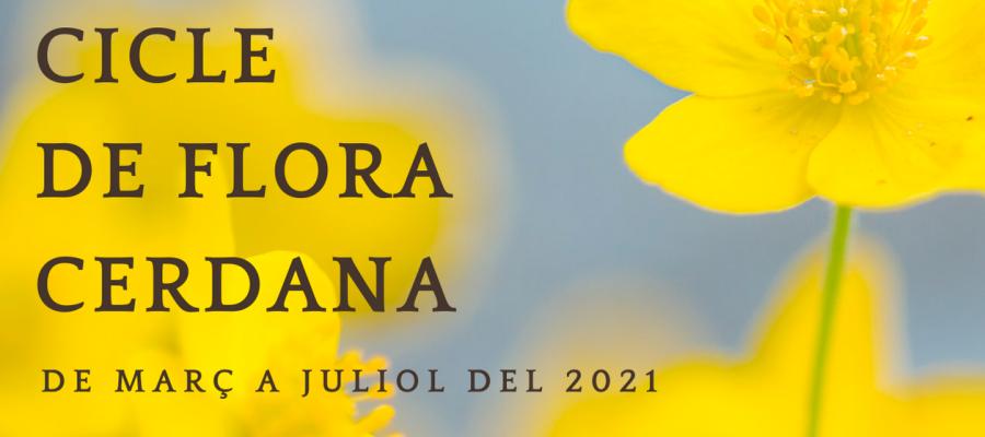 flora_cerdana_head