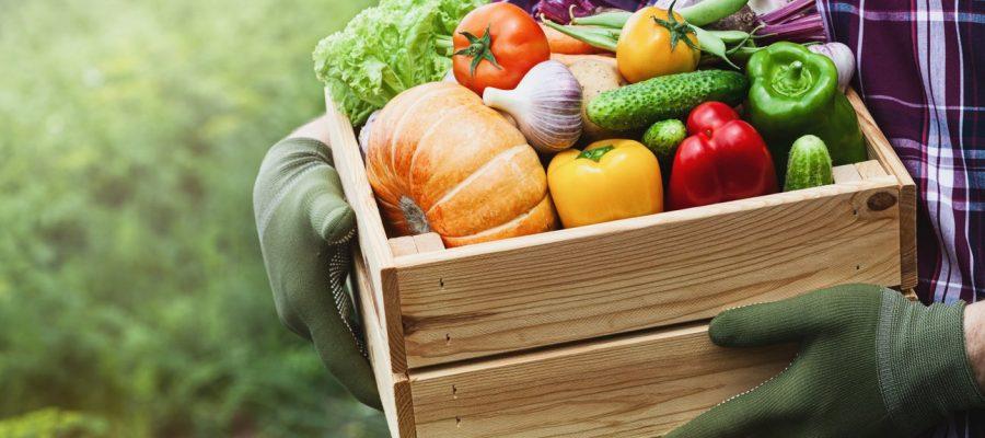 Raons per a consumir productes ecològics