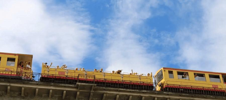 tren-groc-tourisme-canigou